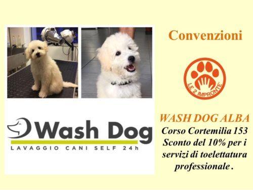 Wash Dog Alba - lavaggio cani self e toelettatura professionale