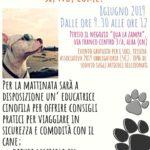 consigli per vacanze con il cane